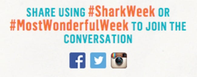 Why Shark Week is so fintastic - Moonsail North